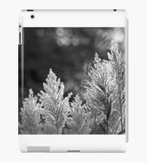 Backlit iPad Case/Skin