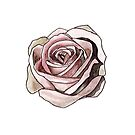 Amnesia Rosa by PaintingsForOak