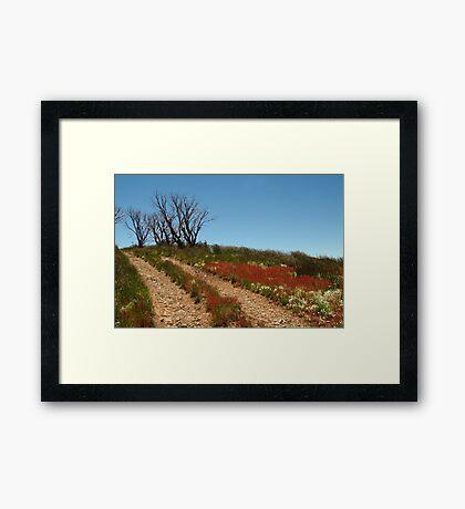 Colours of Blue Rag Range,High Country Framed Print