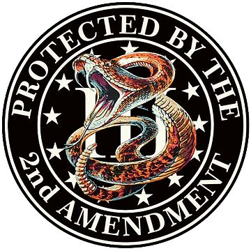 Protected By the 2ND Amendment & 3% by Deadscan