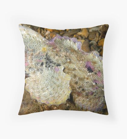 Velvetfish Throw Pillow