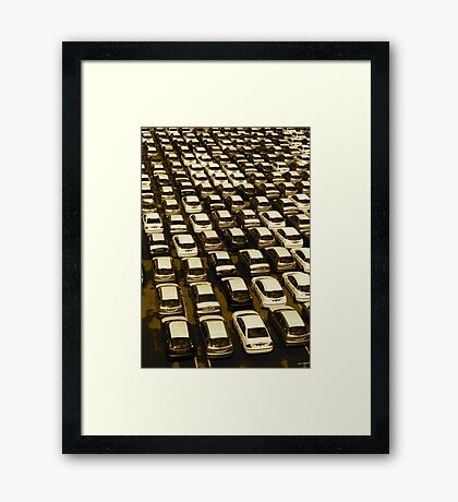 sus-stain-ability Framed Print