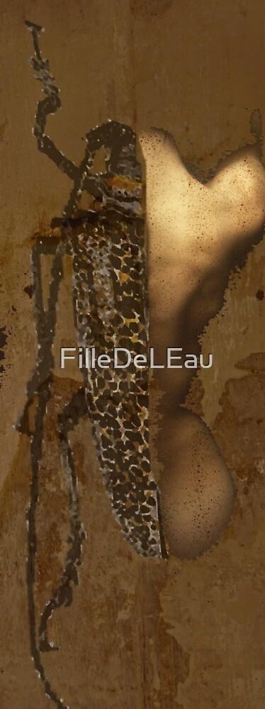 Metamorphosis by FilleDeLEau