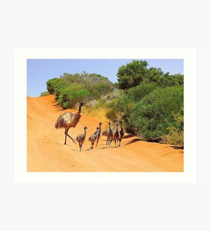 Emu Family  Art Print
