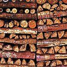 Holzbeig - seasoned firewood by Wolfgang Schweizer