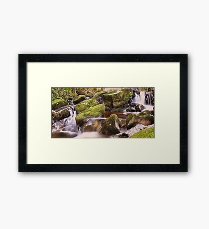 Woodland Stream at Glencree co, Wicklow. Framed Print