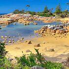 Rock Pool at Binalong Bay, Tasmania, Australia by TonyCrehan