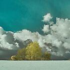 Winter Sky by Mark Bangert