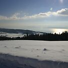 Winter view of Lac de Neuchatel  by christopher363