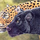 Two of a kind - jaguars by doggyshop