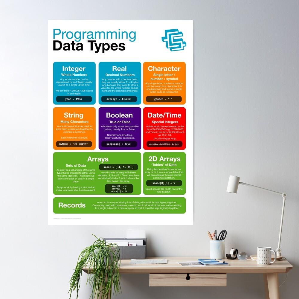 Programming Data Types (Coding Literacy) New 2019 Python Poster
