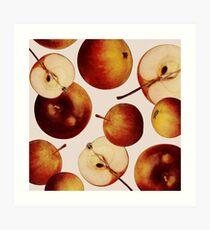 Vintage Apples Print Art Print