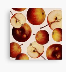 Vintage Apples Print Canvas Print