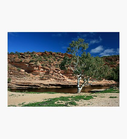 Murchison River Photographic Print