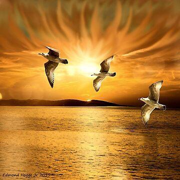 Heavenly Sunset by EdmondHoggeJr