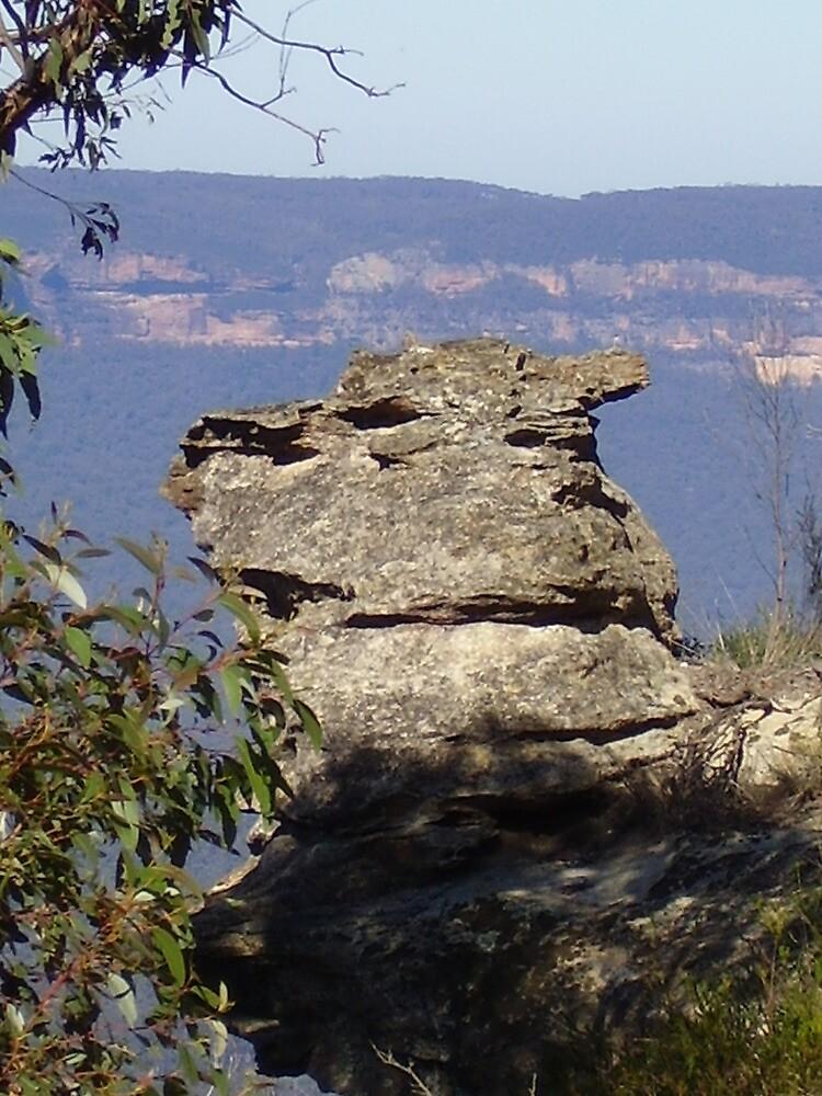on a rock by fida