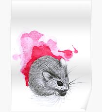 Red Hamster Poster