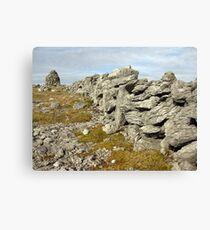 Burren Stone wall Canvas Print
