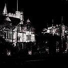 Enchanted Night  by DeeCl