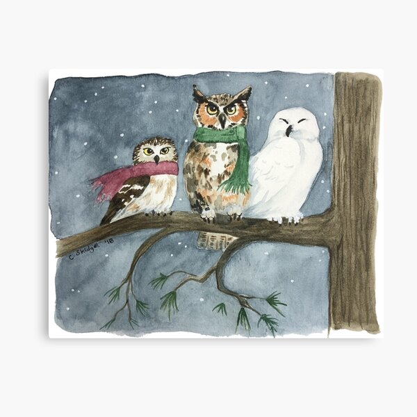 The Three Wise Owls - Watercolor Canvas Print