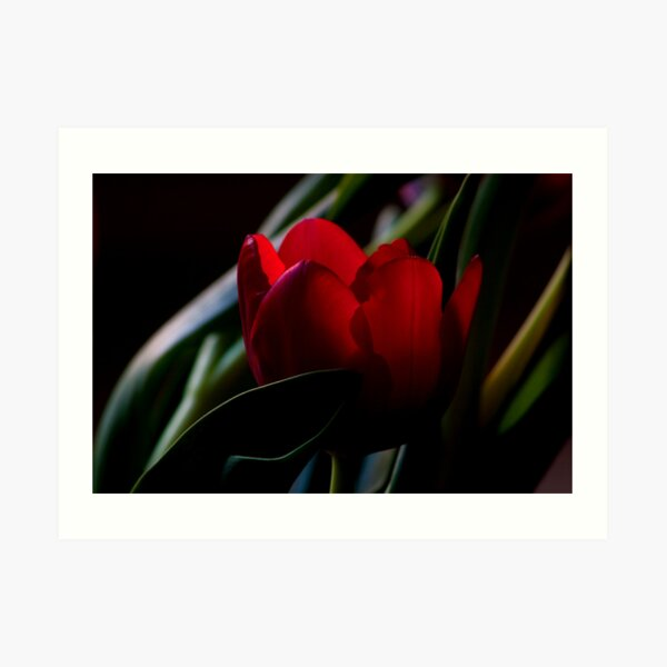 For You My Love... Art Print
