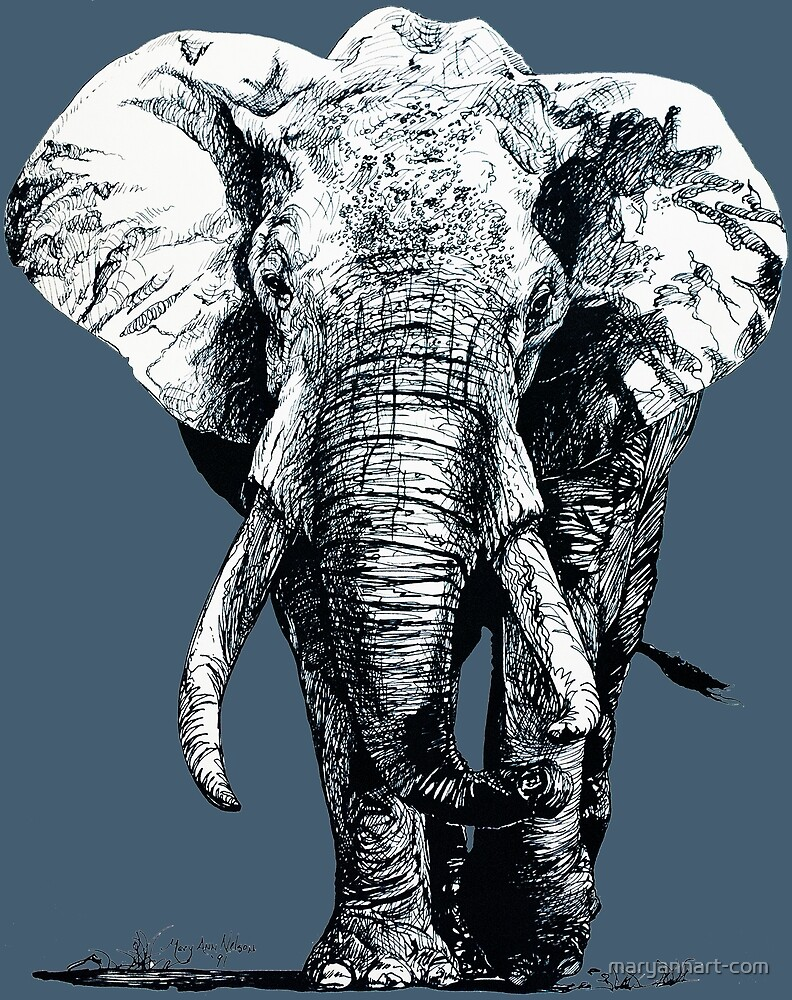 Elephant by maryannart-com