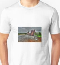 Water Horses HDR  Unisex T-Shirt
