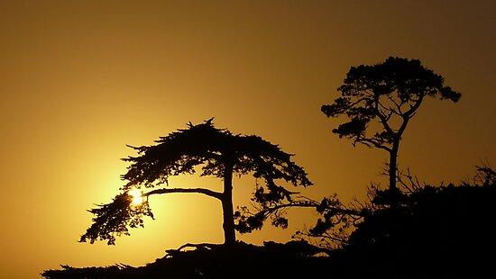 #260      Sunset From Pebble Beach by MyInnereyeMike
