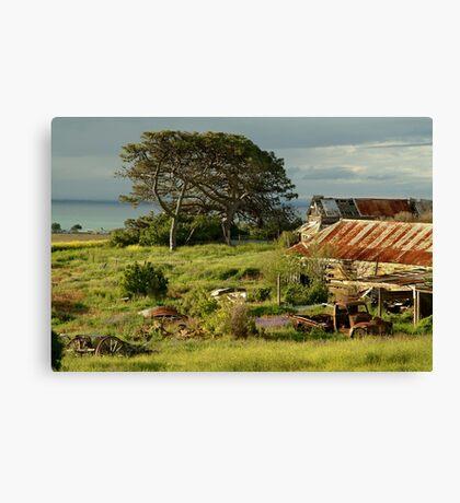 Time Capsule,Bellarine Peninsula Canvas Print