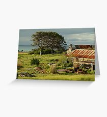 Time Capsule,Bellarine Peninsula Greeting Card
