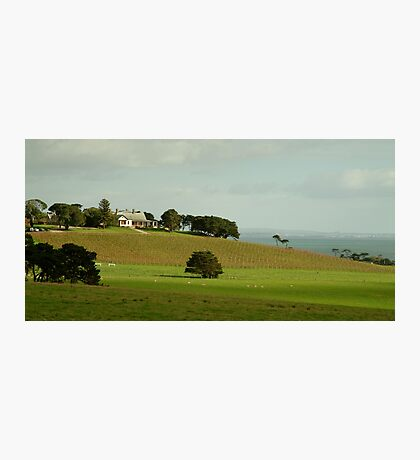 Spray Farm,Bellarine Peninsula Photographic Print