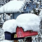 Snow Mail by Glenna Walker