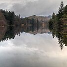 The Tarn In January by Jamie  Green