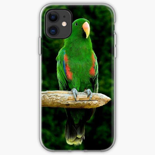 Eclectus Parrot - (Eclectus roratus) iPhone Soft Case