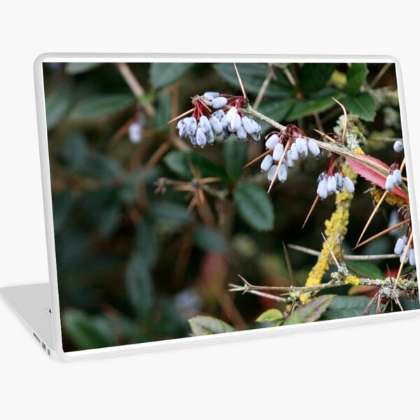 Berries and Thorns Laptop Skin