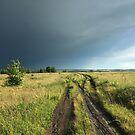 After Rain by Mikhail Zhirnov