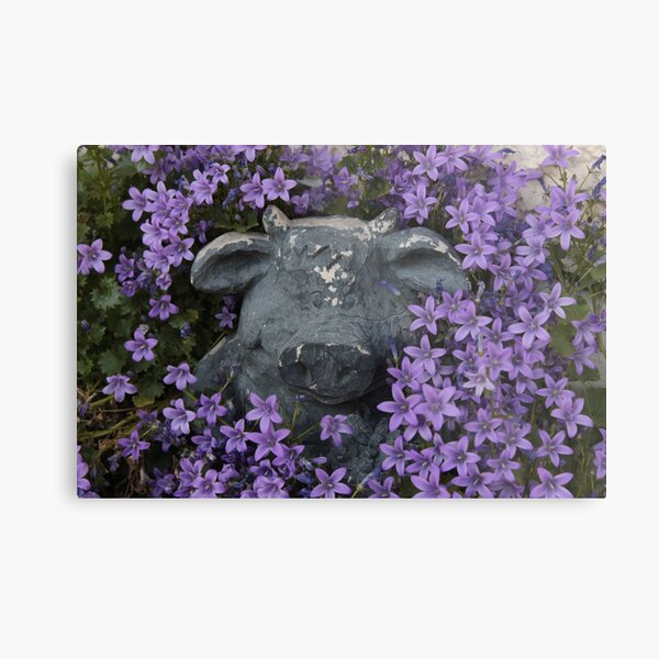 Pig in Purple Flowers Metal Print