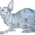 Sphynx Katze von Kuhtina