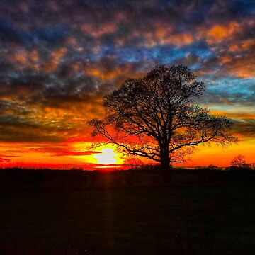 Lincolnshire Sunset by captureasecond