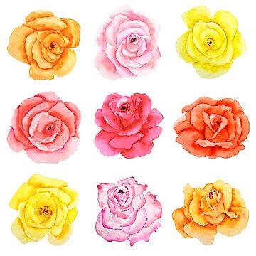 9 colores acuarela rosa rojo amarillo naranja rosas de ColorandColor