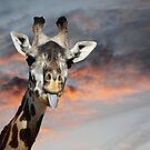 Goofy Giraffe by Darlene Lankford Honeycutt