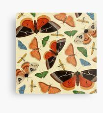 Vintage Butterflies Metal Print