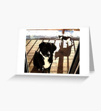The creeping shadow Greeting Card