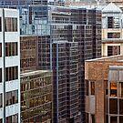 Building Blocks by Lynne Morris
