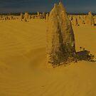 Pinnacles Cervantes WA by Daniel Fitzgerald