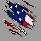 Show Your True Colors: American Flag by flip20xx