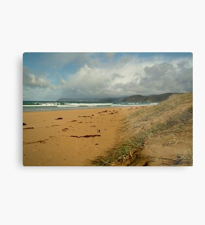 Mogg's Creek Foreshore,to Lorne Metal Print