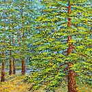 large pine and forest by Irinamai