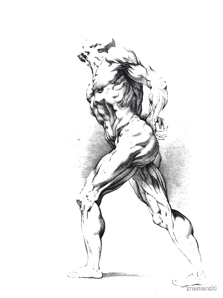 #art #adult #illustration #people renaissance marble painting naked by znamenski