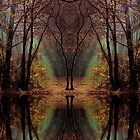 Wizards Grove by relayer51